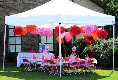 Elmo Birthday Party Ideas For Girls