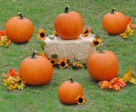 Pumpkin Ring Toss Halloween Kids Games