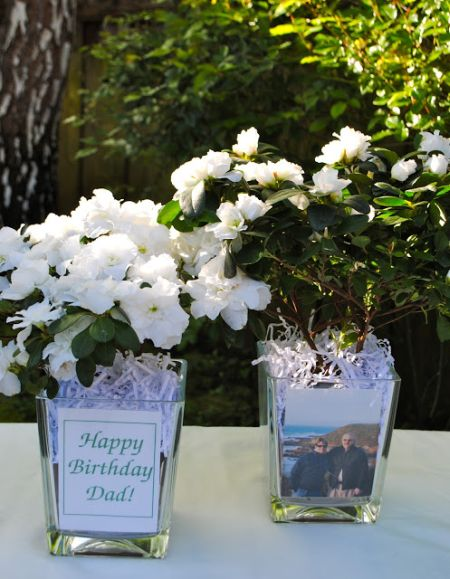 Azalea 80th Birthday Decorations