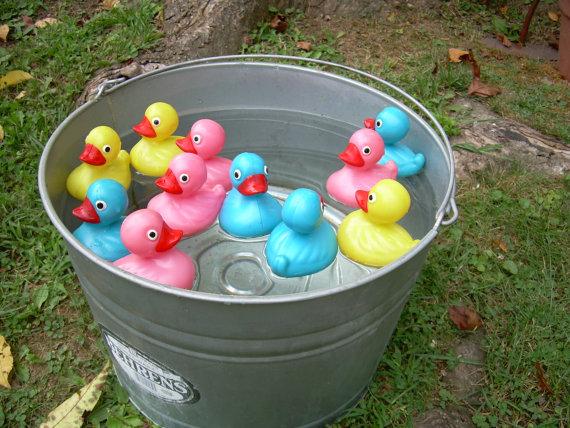 pick-up-ducks