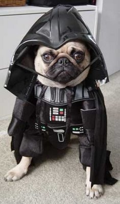 Darth Vader Halloween Costumes For Dog