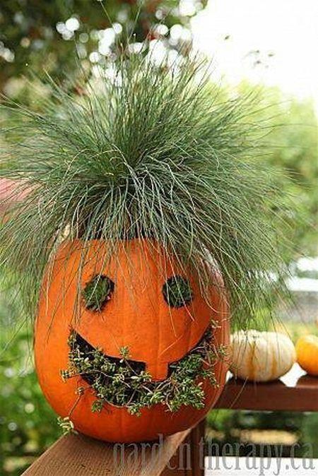 Planted Halloween Pumpkin Carving Ideas