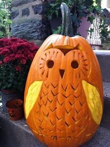 Owl Halloween Pumpkin Carving Ideas