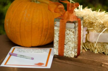 Halloween Pumpkin Seed Contest