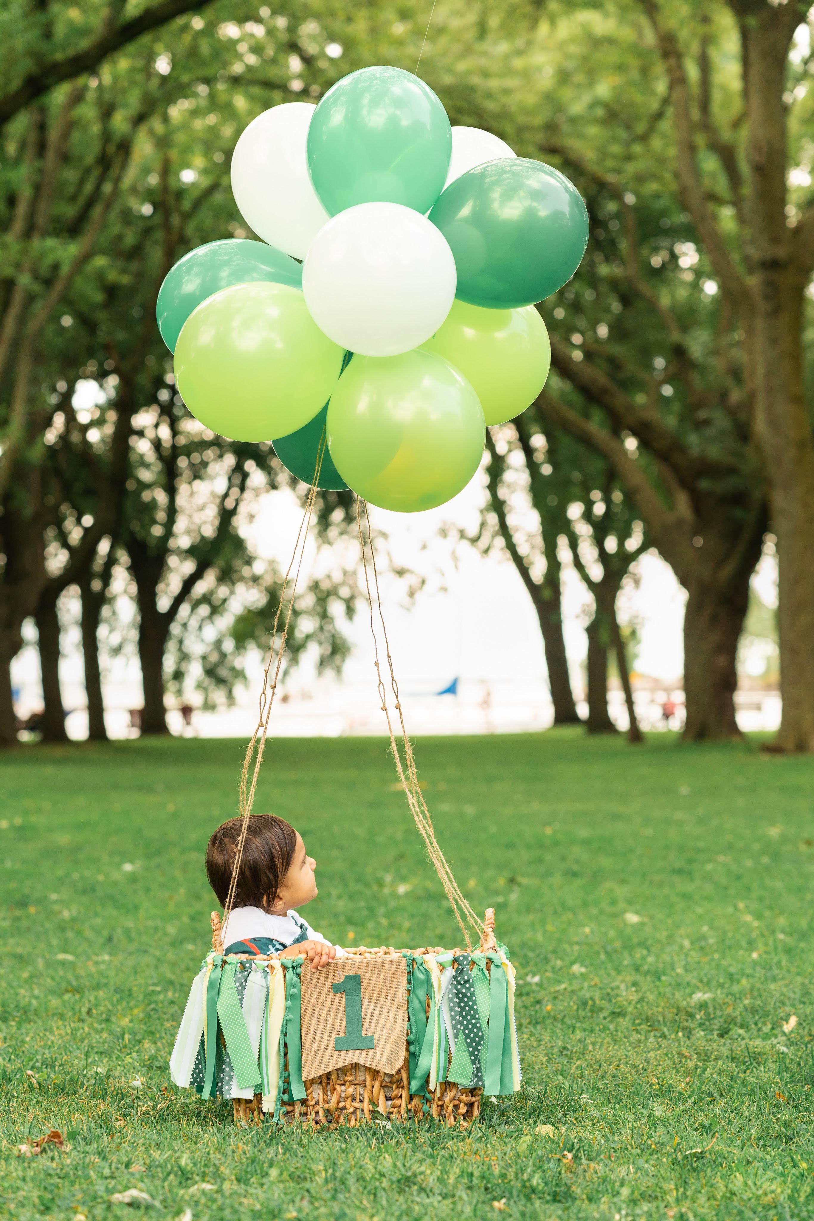diy-1st-birthday-photo-shoot-ideas