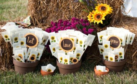 Naturally Pretty Seed Packet Favors