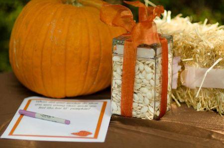 Halloween Pumpkin Seed Contest